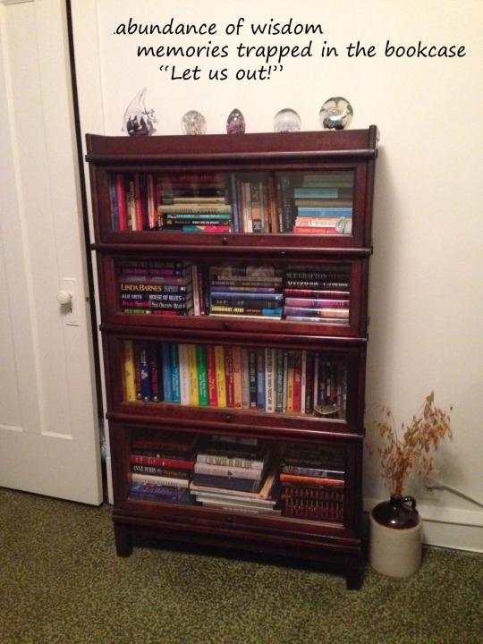 bookcase haiga 2